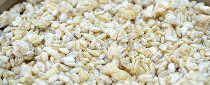 Выращивание Коджи на злаках (ячмень, пшеница, кукуруза…)