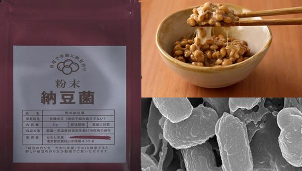 Натто Рецепт (Bacillus natto)